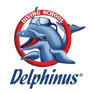 Island of the Blue Dolphins - TheBestNotescom