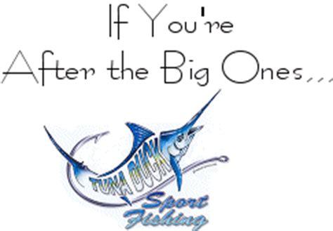 Island of the Blue Dolphins Summary Studycom